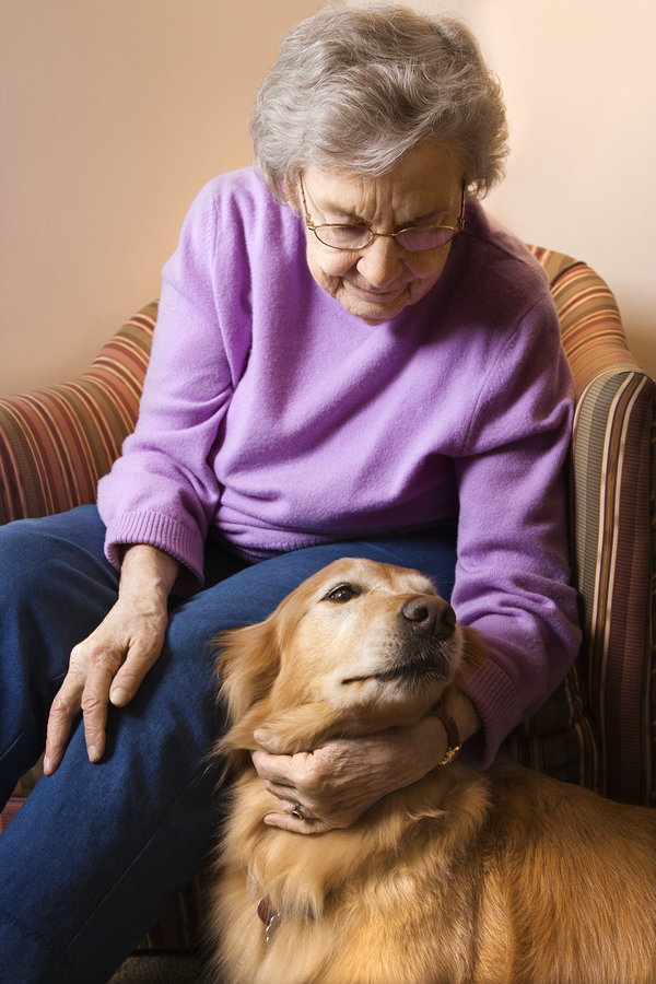 Senior Care in Bay Village OH: Why Should You Include Your Parents' Dog in a Senior Care Plan?